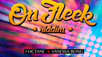 ON FLEEK RIDDIM [PROMO] 2015