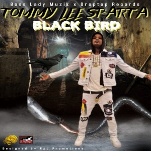 tommy_lee_sparta_-_black_bird_front_cover