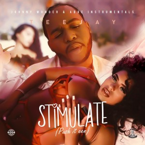teejay_-_stimulate_(push_it_een)_front_cover